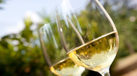 White, pink and sparkling wines are perfect for summer