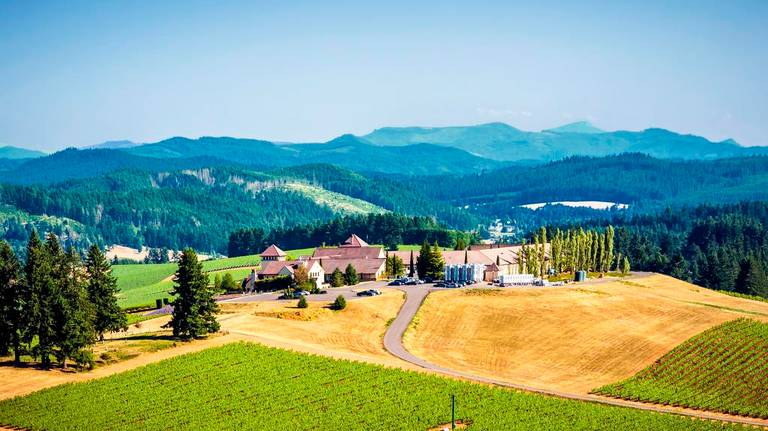 Eugene, South Willamette blossom as wine country destination
