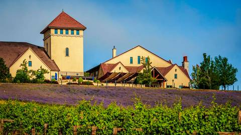 2021 Pacific Northwest Winery of the Year: King Estate Winery